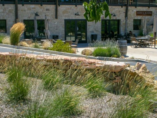 Tasting Room Landscapes in the 2020s