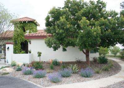 The Synergy of Your Landscape: Adding Value to Your Home