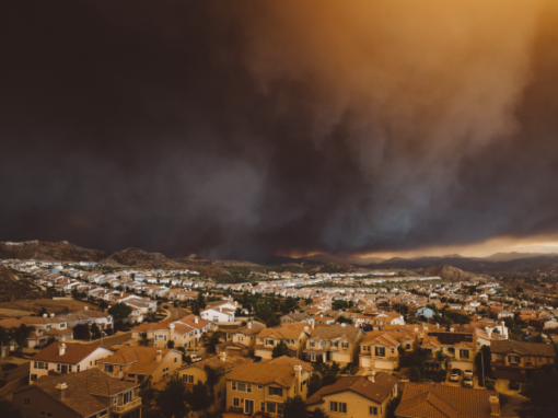 Fire Season is here. How can your landscape help?