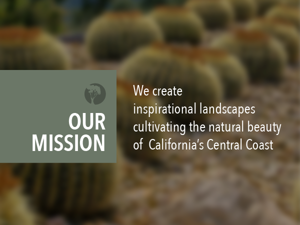 Breaking Down the Madrone Mission Statement
