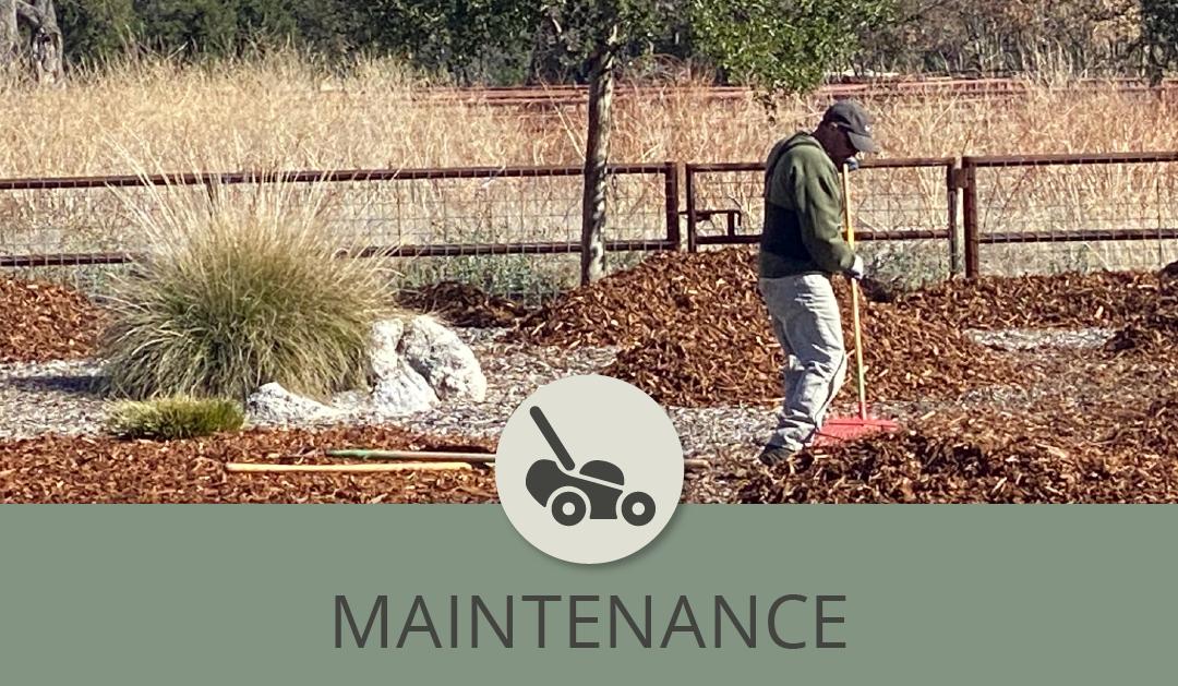 Landscape Maintenance and the 20/80 Ratio