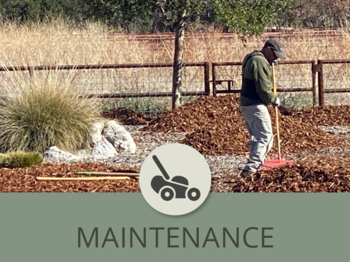 Landscape Maintenance and the 20/80 Ratio